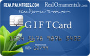 Plant Gift Card Certificate