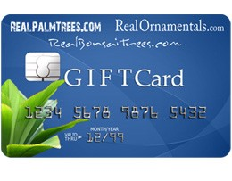 Real's Nursery Gift Card (Web)