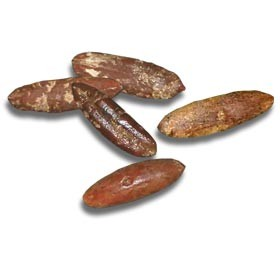 True Date Palm Seeds